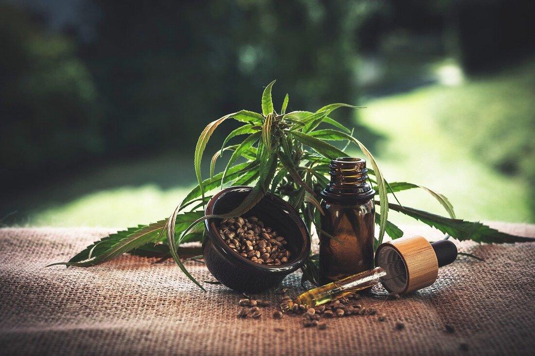 CBD oil for dogs cannabidiol cannabis hemp marijuana THC dogs oil